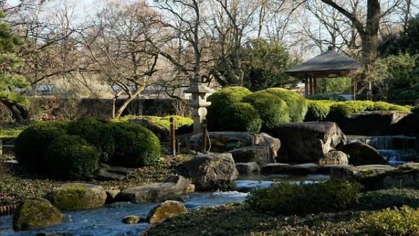 indoor rock asian garden images